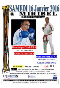 stage-karate-valera-bilicki-16-01-2016