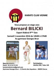 stage-bernard-bilicki-kc-vienne